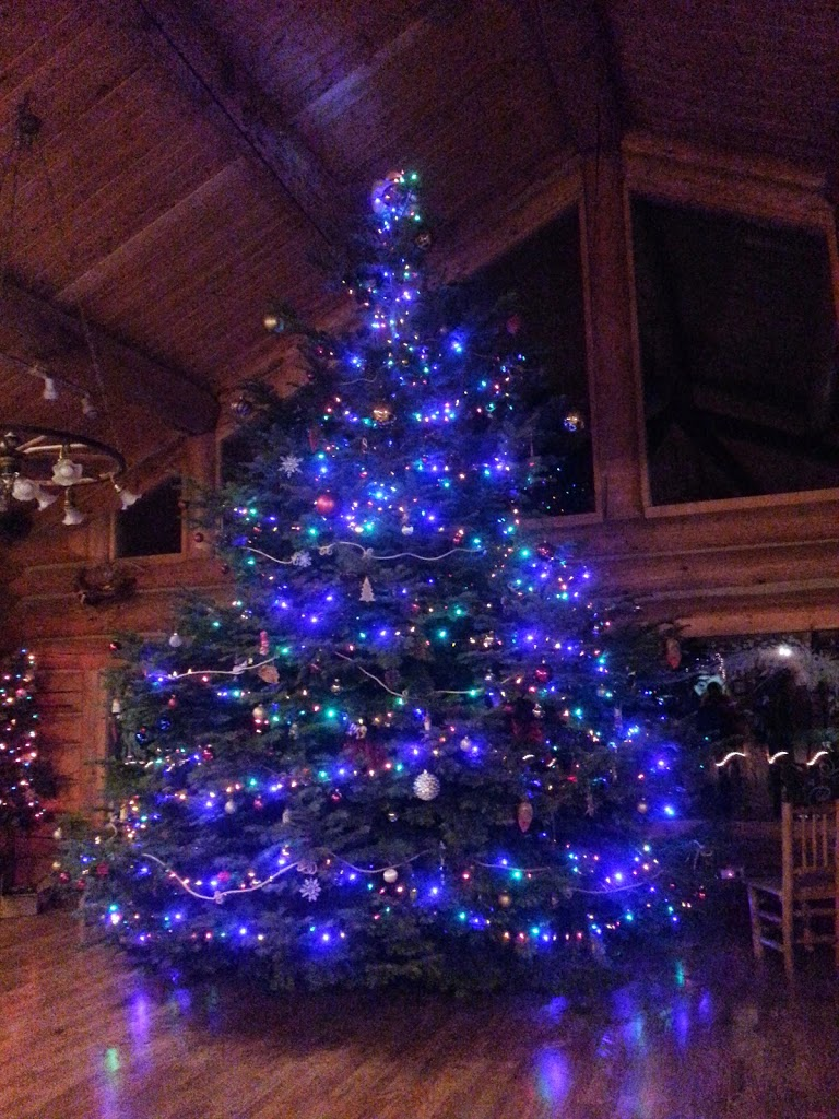 Christmas Tree at Western Pleasure Guest Ranch