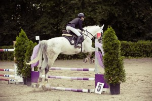 show-jumping-594156_640