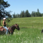 Growing Up Guest Ranch Guiding Trail Rides