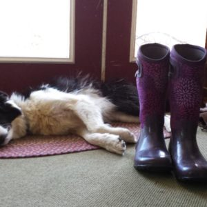 Even Roper understood that the mood for the day was relaxation.